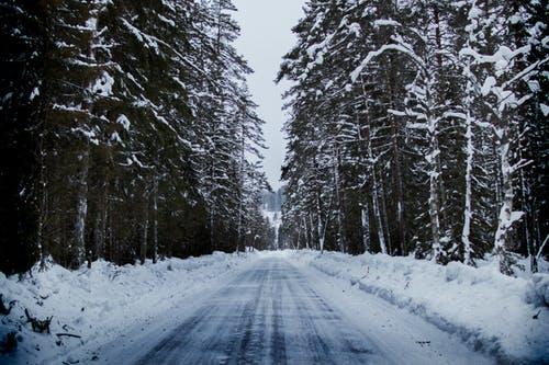 зимен път